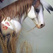 Indian_Horse_10